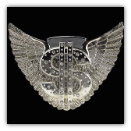 Winged Dollar Lighter Belt Buckle