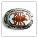 Scorpion -Blue Belt Buckle