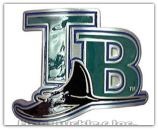 Tampa Bay Rays Belt Buckle